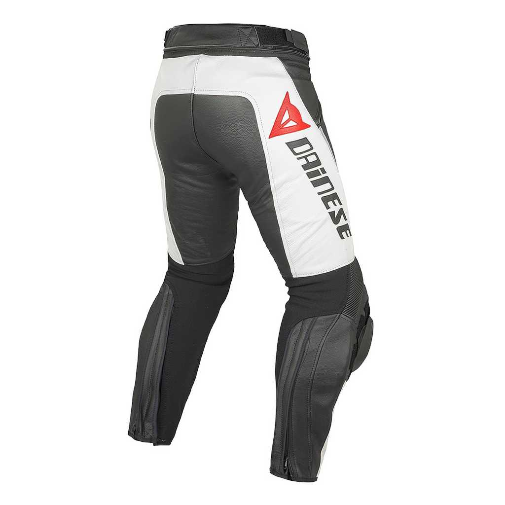 dainese delta pro c2 leather pant riders choice come. Black Bedroom Furniture Sets. Home Design Ideas